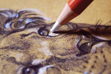 beginners_sketching_1400x600